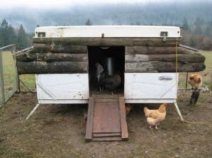 Chicken Tent Trailer