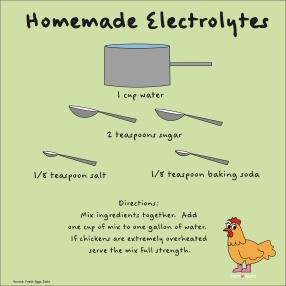 Homemade Electrolytes