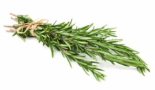 rosemary-nutrition-facts