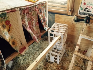 nesting box bar