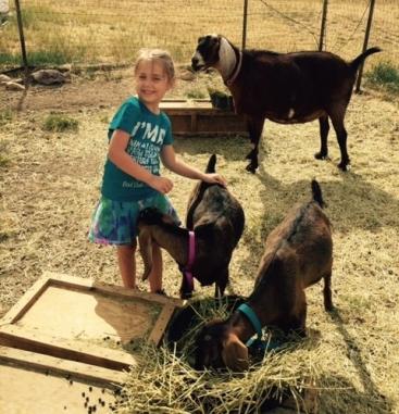 seren-and-goats.jpg