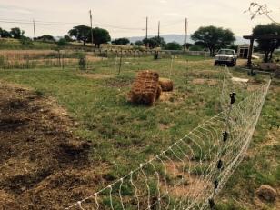 fence change