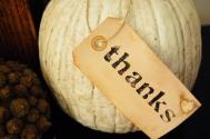 thanks pumpkin