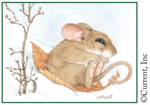 LKPowell mouse