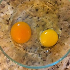 duck-egg-versus-chicken-egg