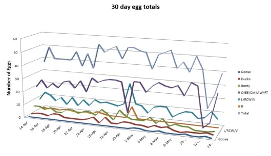 30 day egg totals